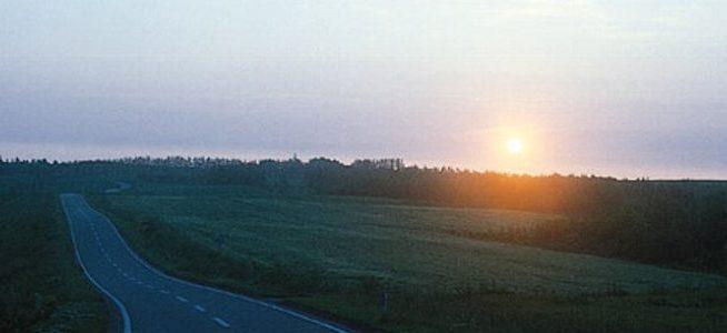 朝日の道路